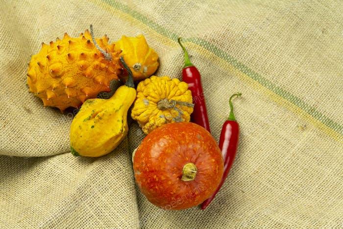 Ornamental pumpkins, kiwano, chilli peppers