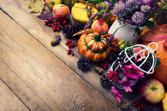 Fall background with pumpkins, clover and pink flowers, copy spa