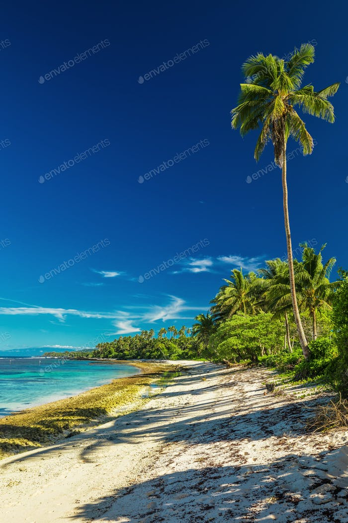 Natural vibrant tropical beach on south side of Samoa Island wit