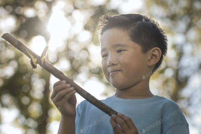 A boy holding a stick with a colourful butterfly perched on it.