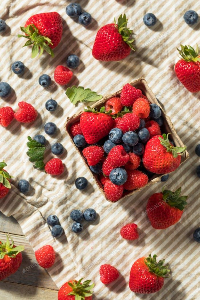Raw Red Organic Mixed Berries