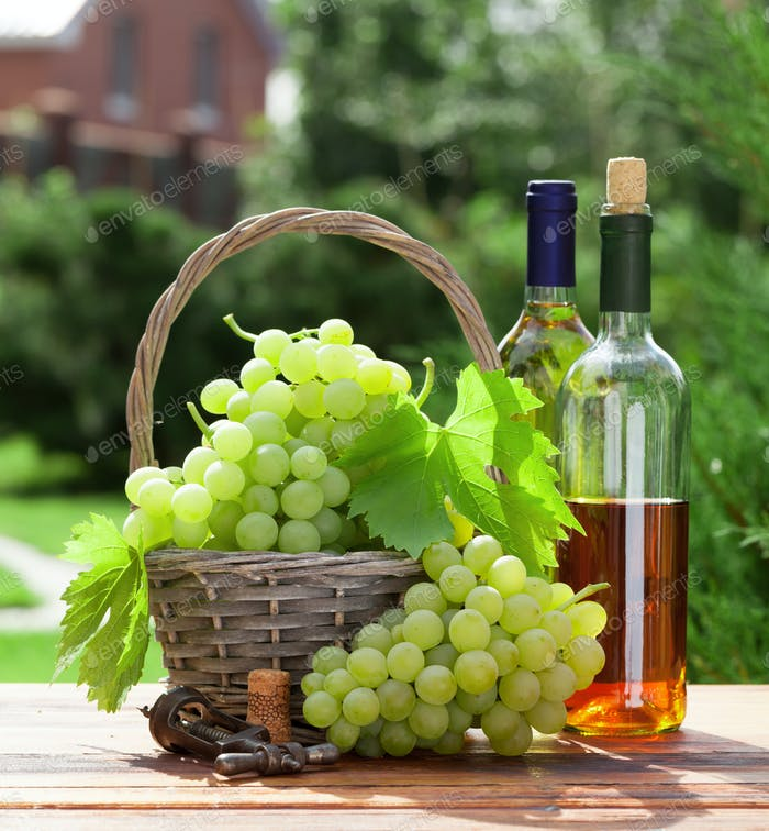 White grape, bottles of wine