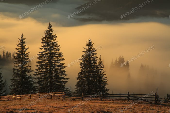 Blick auf Nebelberge im Herbst, Karpaten, Ukraine