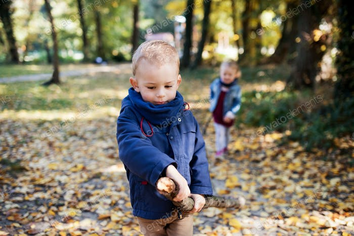Twin toddler sibling boy and girl walking in autumn forest