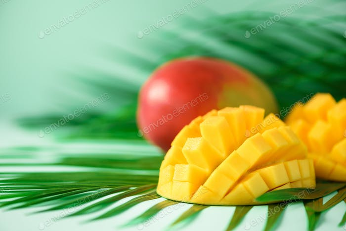 Exotic mango fruit over tropical green palm leaves on turquoise background. Copy space. Pop art