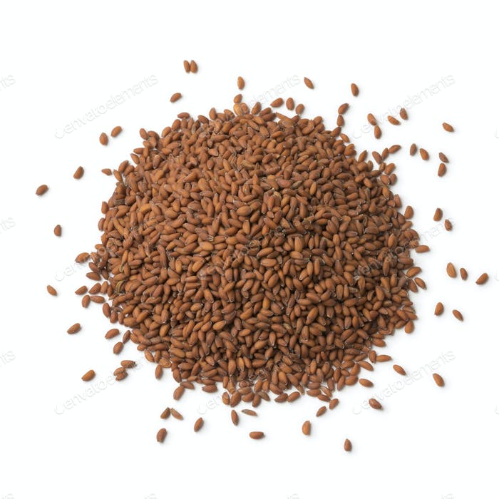 Heap of garden cress seeds