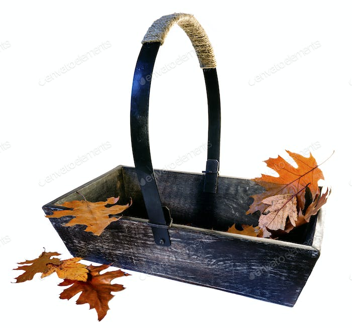 Garden Trug with Autumn Leaves