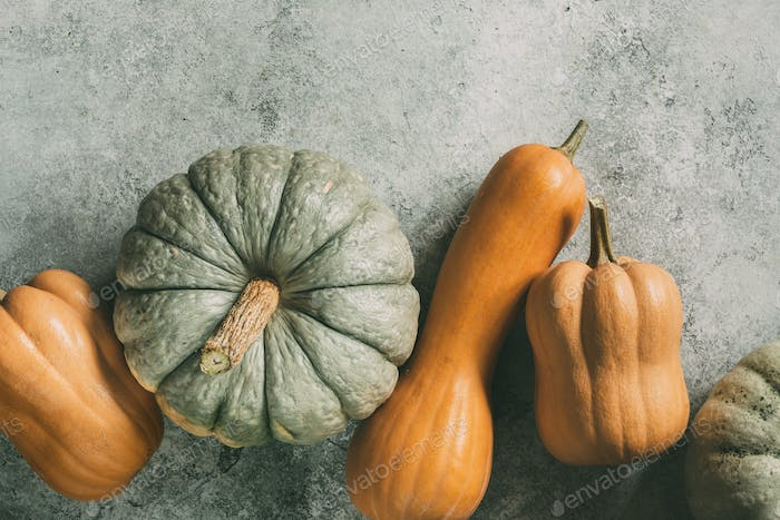 Different pumpkins on wooden surface with copy space
