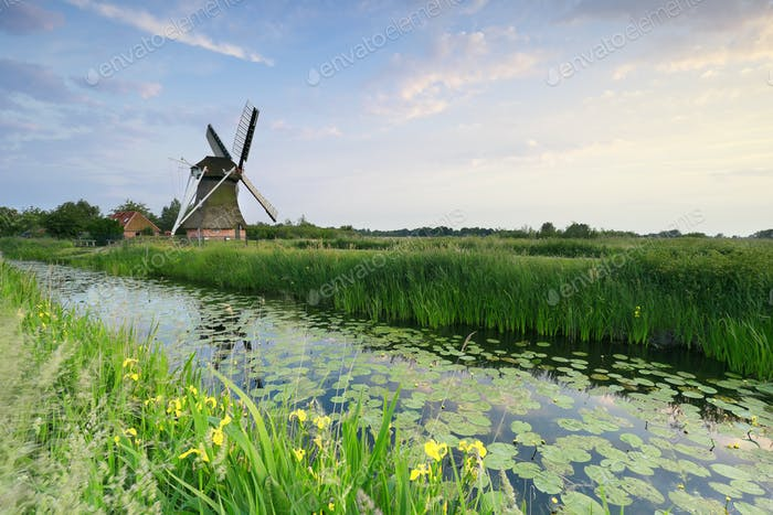 Molino de viento holandés por río en verano