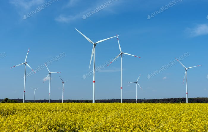 Wind power plants in a field of blooming oilseed rape