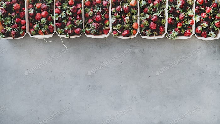 Fresh strawberries in plastic-free boxes over grey concrete background