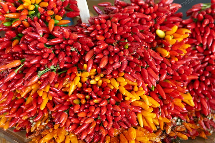 Close up of red chilli in market
