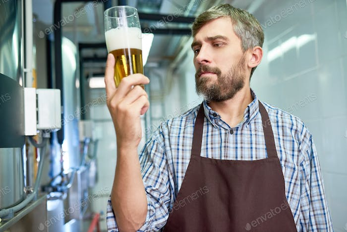 Checking Quality of Fresh Beer