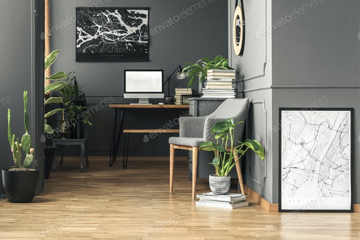 Fresh green plants in real photo of dark room interior with wain