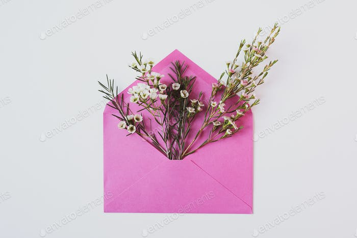 white delicate flowers in a pink envelope on white background