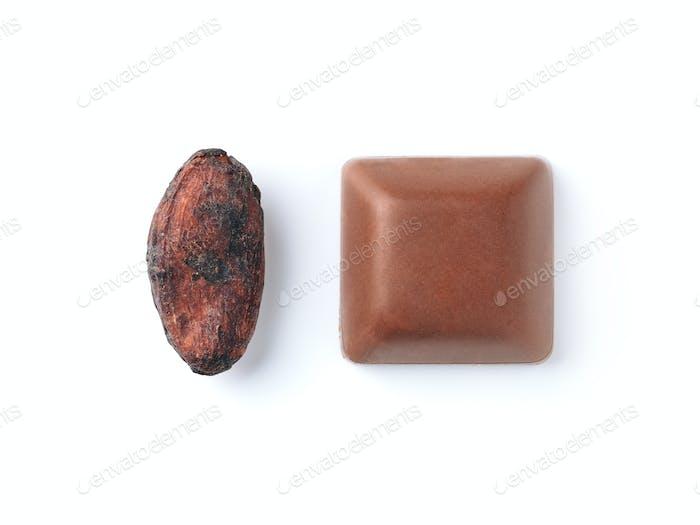 Rohe Kakaobohne und Schokoladenstück isoliert weiß