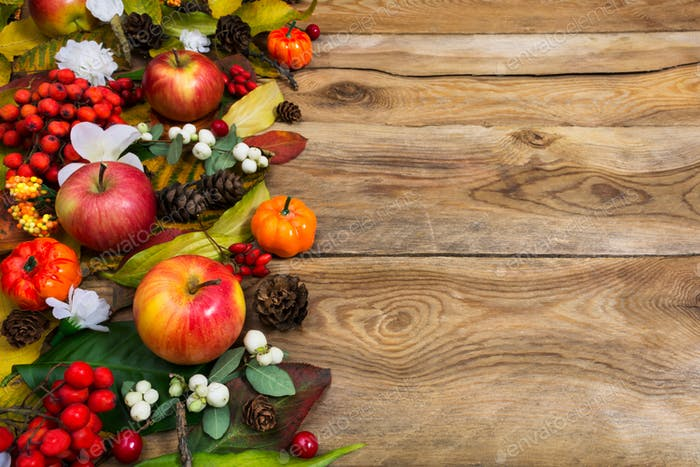 Fall greeting with pumpkins, red and white berries, copy space