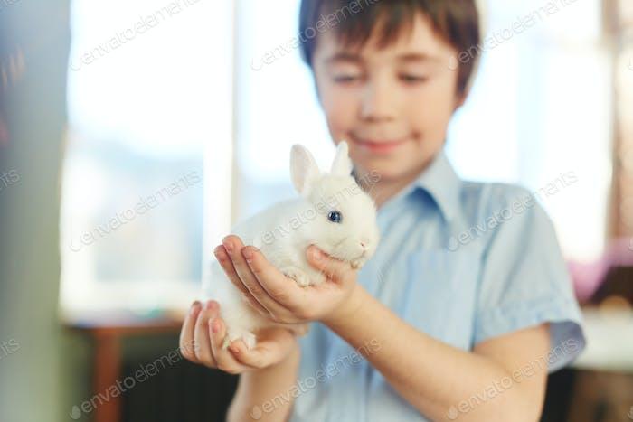 Ребенок кролик
