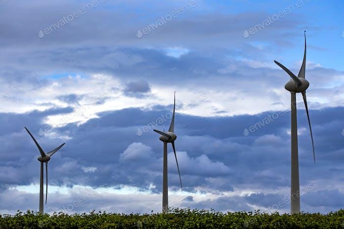Three windmills in summer season