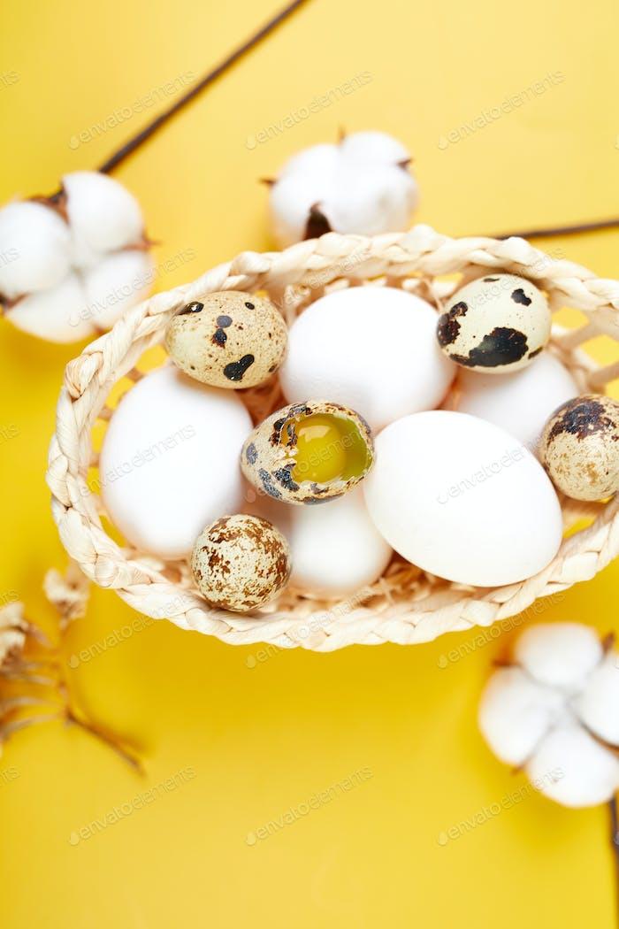Ostern flache Laien Komposition mit Baumwollblüten und Ostereiern