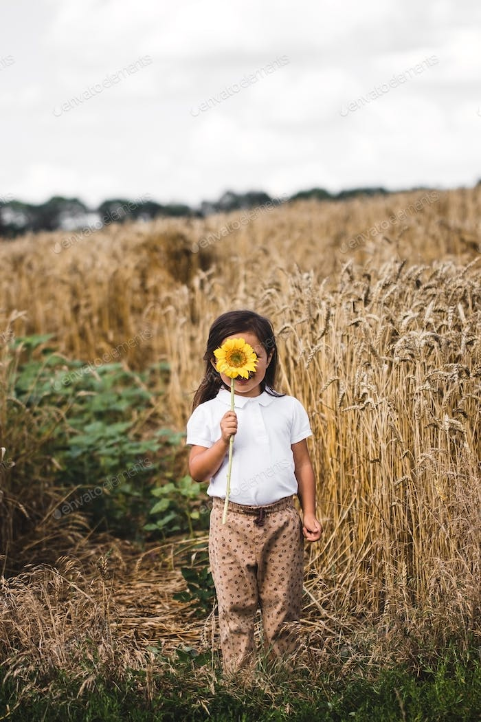 Happy little girl smelling a sunflower on the field