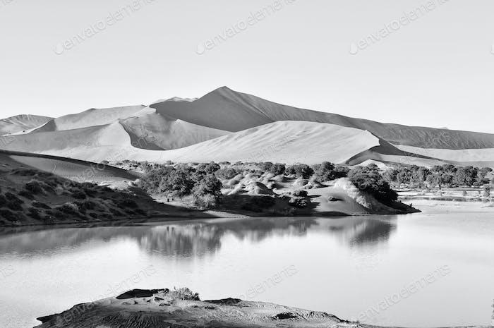 Flooded Sossusvlei in the Namib Desert in Monochrome