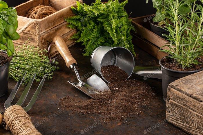 Gartengeräte und Utensilien