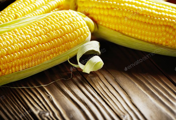 Ripe fresh organic sweet corncobs on wooden table