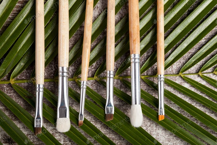 Makeup brushes on leaves