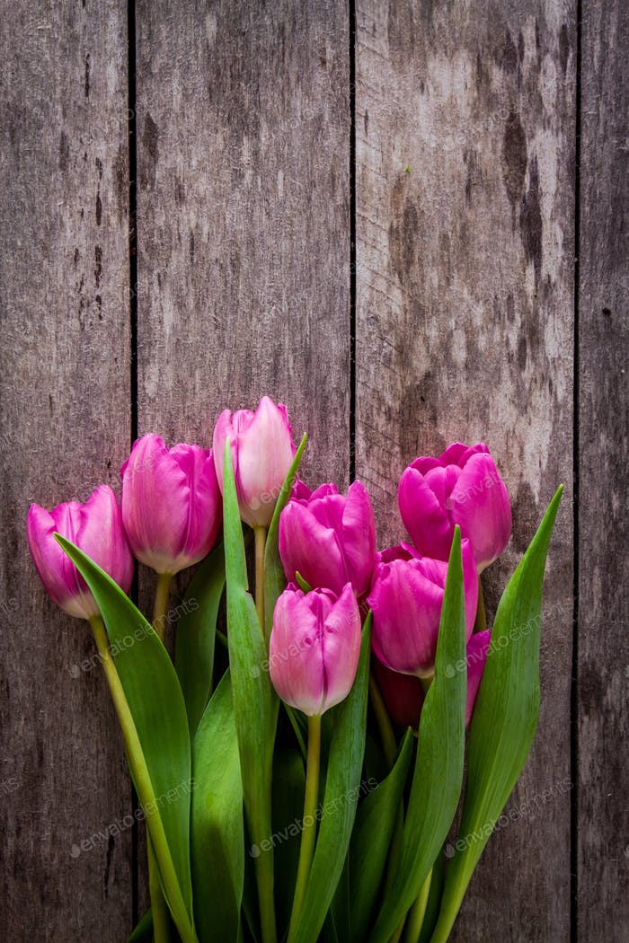 bouquet of pink tulips on a wooden background
