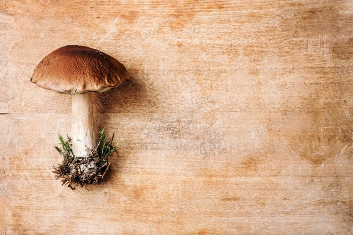 Boletus edulis mushroom on wooden background. Copy space. Top view. Organic forest food, edible