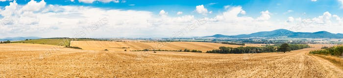 Farmland countryside panorama at morning