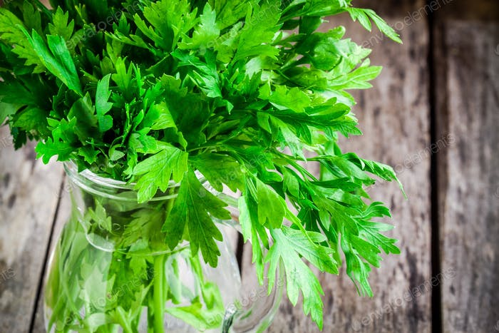 organic fresh bunch of parsley in a glass jar closeup