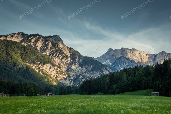 Beautiful pasture below the Julian Alps