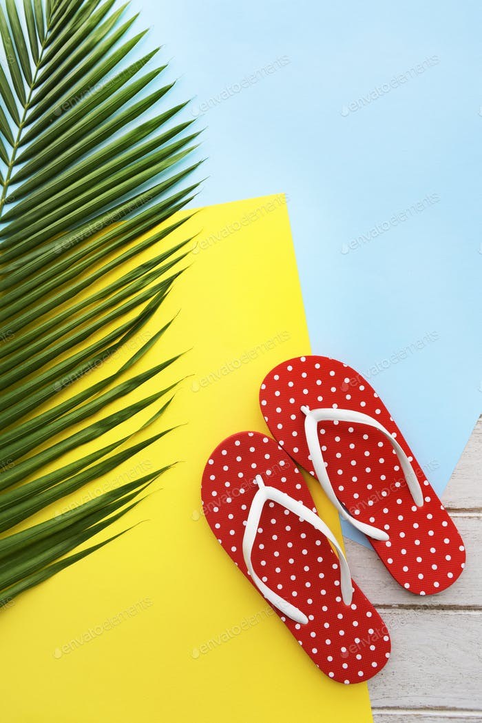 Beach Summer Holiday Vacation Flip Flop Sandals Relaxation Conce