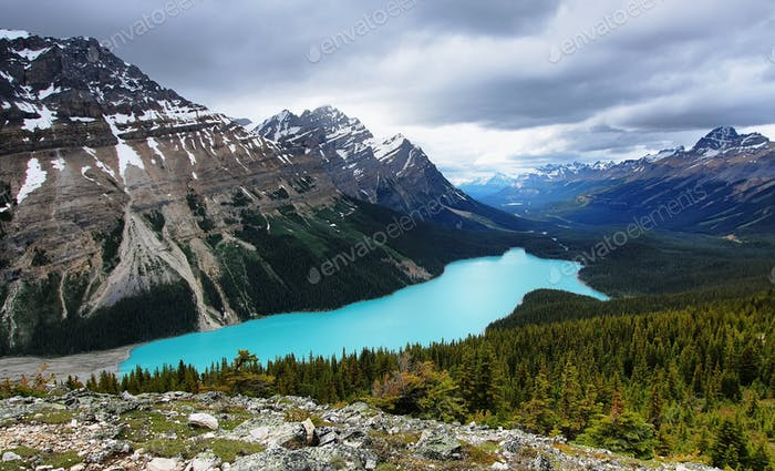 Peyto lake overlook