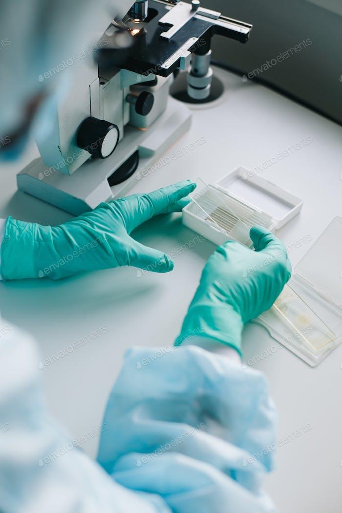Crop Hände legen Mikroskop Gläser in Box