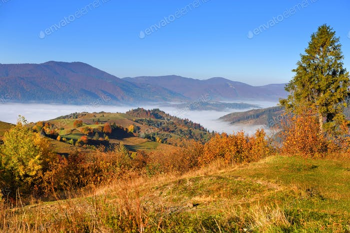 Beautiful autumn mountain landscape in the morning light with fog and bright hills