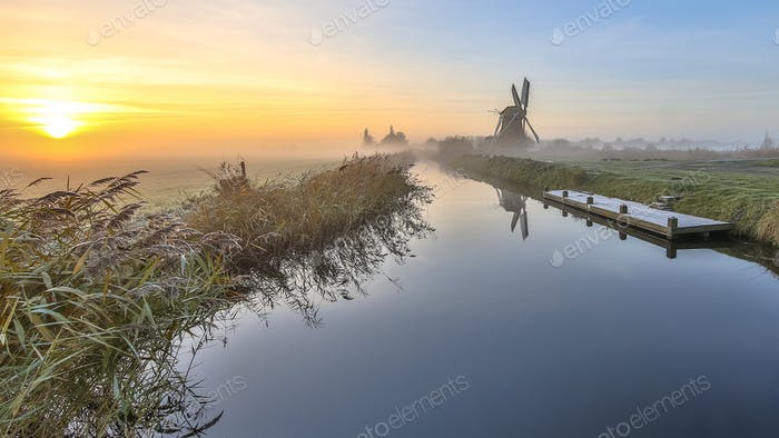 Windmill in dutch polder landscape