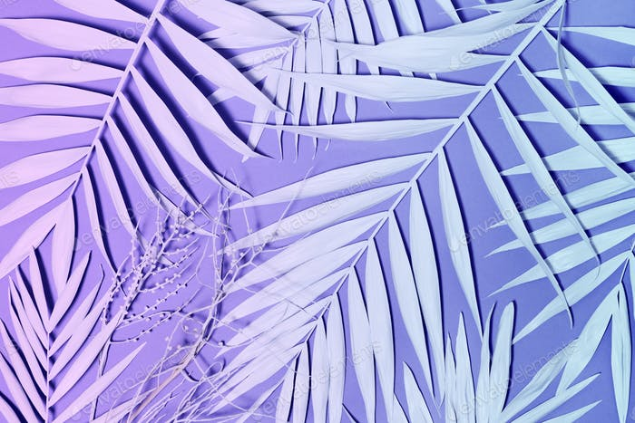 Neon colored palm leaves