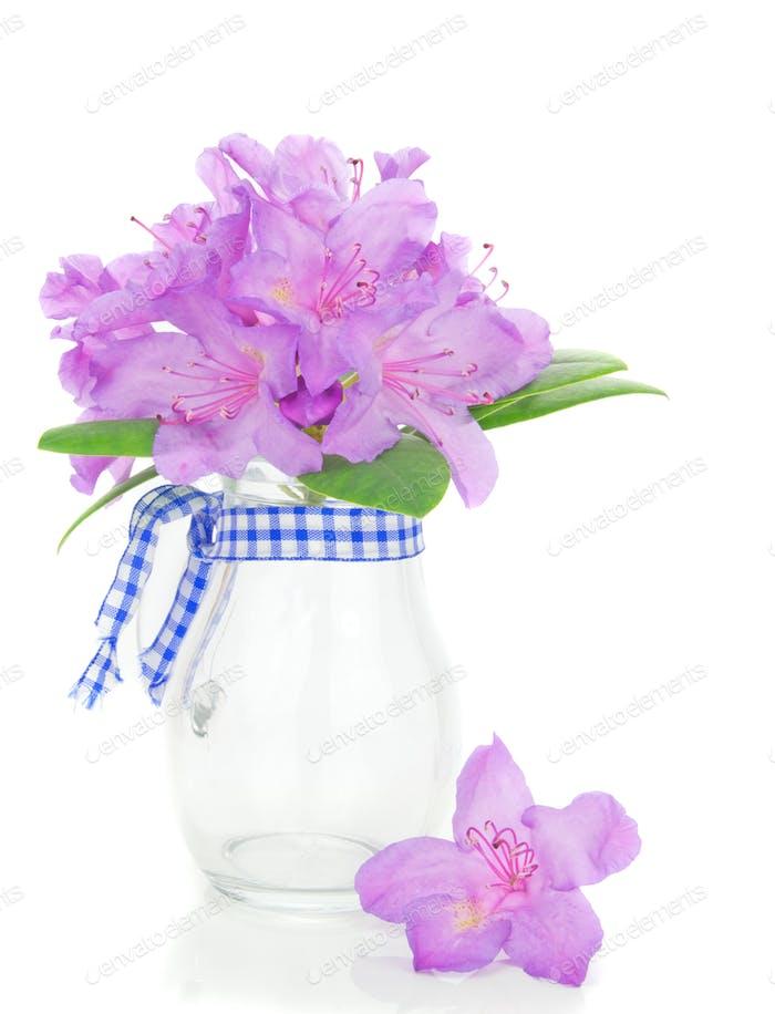 Rhododendron in einer Vase