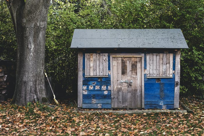 Exterior view of wooden shed with blue walls in garden, autumn leaves on lawn.