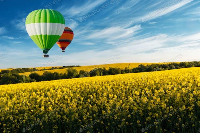 Gelbes Rapsfeld auf blauem Himmel Hintergrund