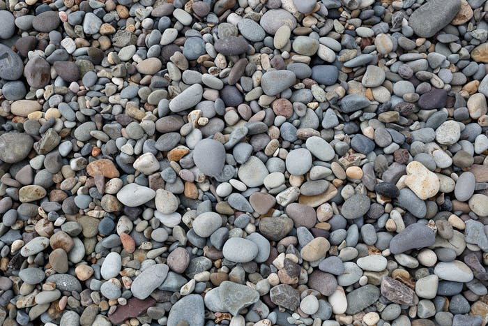 wet gray pebbles on the seashore. great background for design