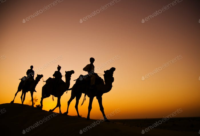 Indigenous Indian Men Riding Through The Desert With His Camel