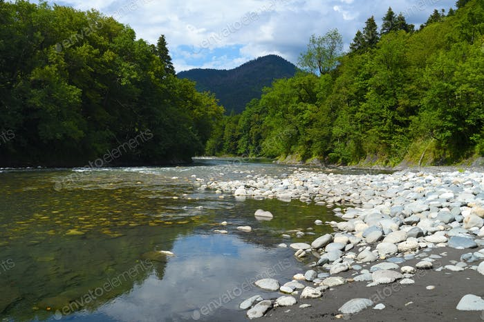 Landscape of mountain river in forest