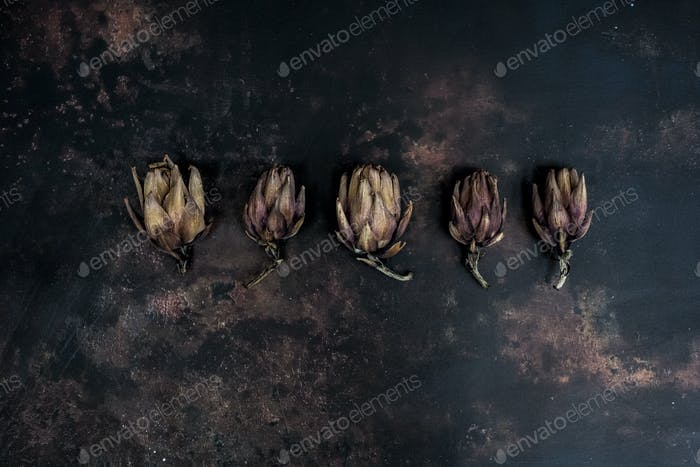 High angle close up of five baked artichokes on black rusty surface.