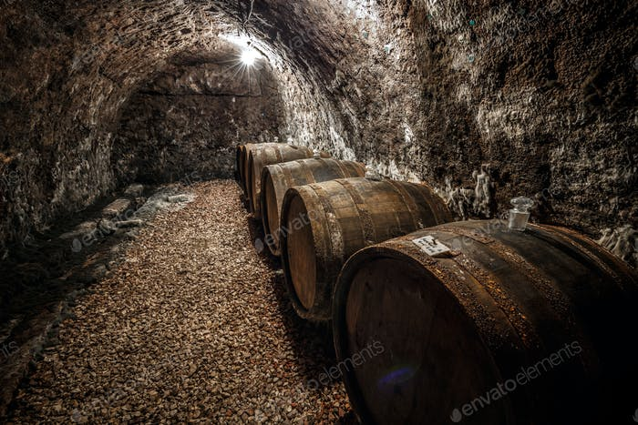 Wine barrels row