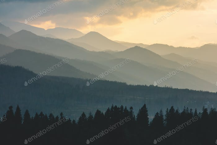 Forest under hills and mountains at sunset. Tatra Mountains in Poland.