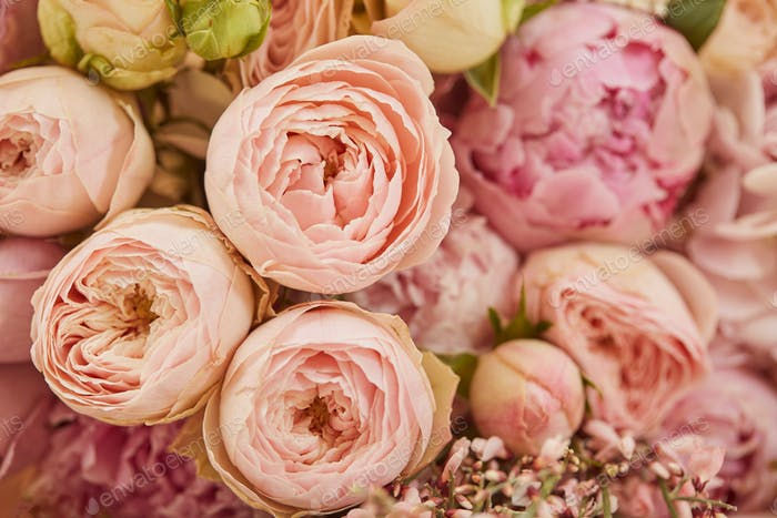 close up of bouquet of pink peonies